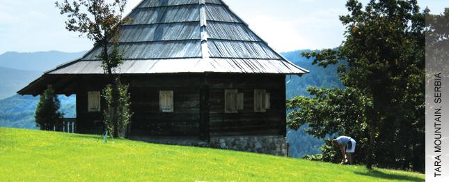 Planinski centri