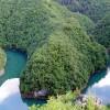 Kanjon Uvca, stanište Bjeloglavog Supa