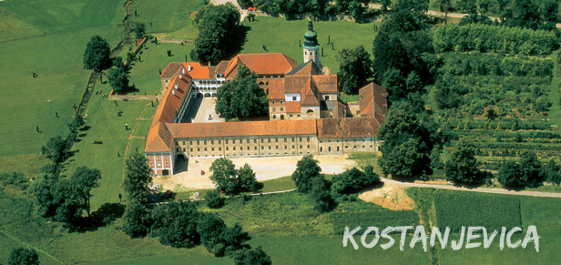 Kostanjevički dvorac