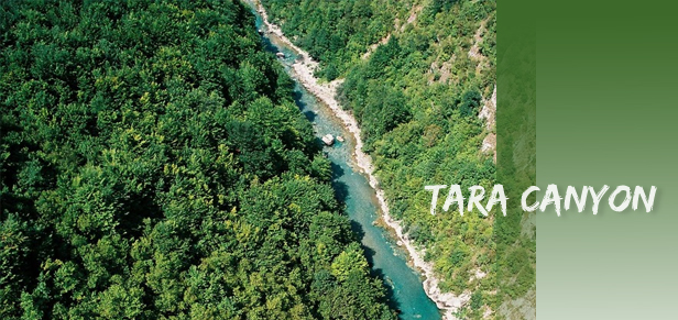 tara canyon Kanjon rijeke Tare