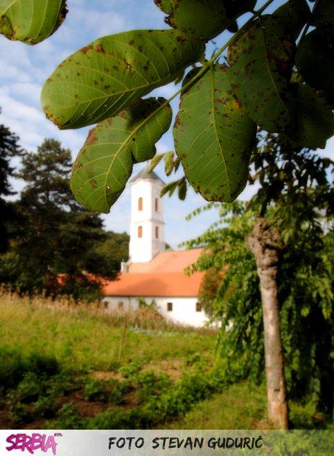 vrdnik manastir ravanica Nacionalni park Fruška gora